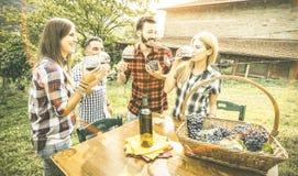 Amis heureux ayant le vin potable d'amusement au vignoble d'établissement vinicole Image libre de droits