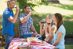 Amis heureux buvant au parc Image libre de droits