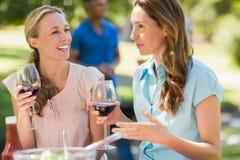 Amis heureux buvant au parc Images libres de droits