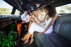 Amis heureux buvant du champagne Photo stock