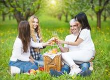 Amis heureux buvant du champagne sur le pique-nique dans le jardin Photo stock
