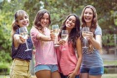 Amis heureux buvant en parc Image stock