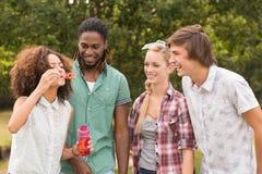 Amis heureux dans les bulles de soufflement de parc Photographie stock