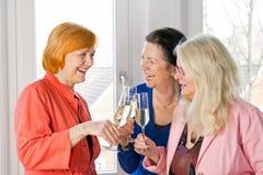 Amis heureux de femmes adultes jetant des verres en l'air de vin Photos libres de droits