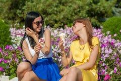 Amis heureux de femmes mangeant la crème glacée  Photographie stock