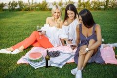Amis heureux de jeunes femmes ayant un pique-nique dans le pays Image libre de droits