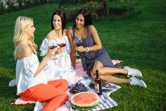 Amis heureux de jeunes femmes ayant un pique-nique dans le pays Image stock
