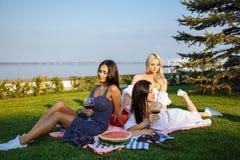 Amis heureux de jeunes femmes ayant un pique-nique dans le pays Photos libres de droits
