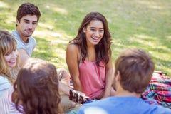 Amis heureux en parc Images stock