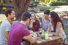 Amis heureux en parc ayant des bières Photographie stock libre de droits