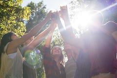 Amis heureux en parc ayant des bières Photos stock