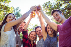 Amis heureux en parc ayant des bières Image libre de droits