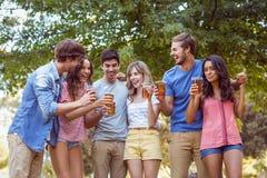 Amis heureux en parc ayant le pique-nique Photo stock