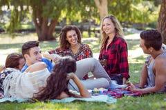 Amis heureux en parc ayant le pique-nique et jouant la guitare Images stock