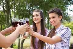Amis heureux en parc ayant le vin Images stock