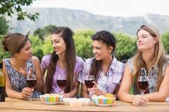 Amis heureux en parc ayant le vin Photo stock