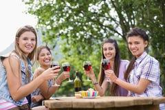 Amis heureux en parc ayant le vin Photos stock