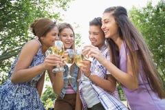 Amis heureux en parc ayant le vin Photos libres de droits