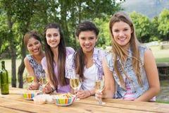 Amis heureux en parc ayant le vin Photographie stock libre de droits