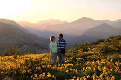 Amis heureux entourés par des fleurs Image stock