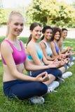 Amis heureux exécutant le yoga au parc Image stock