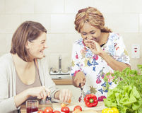 Amis heureux faisant cuire dans la cuisine Photographie stock libre de droits