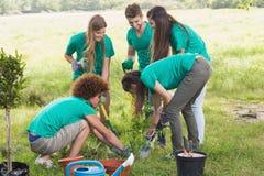 Amis heureux faisant du jardinage pour la communauté Photos stock