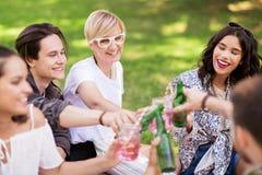 Amis heureux faisant tinter des boissons au parc d'été Photos stock