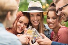 Amis heureux faisant tinter des verres au jardin d'été Photos libres de droits