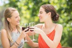 Amis heureux grillant des verres de vin Photographie stock libre de droits