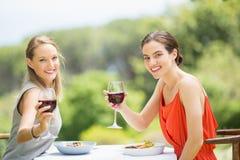 Amis heureux grillant des verres de vin Images libres de droits