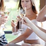 Amis heureux grillant le vin Photos stock