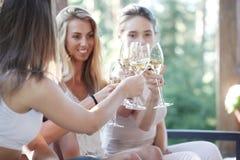 Amis heureux grillant le vin Photo libre de droits