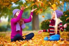 Amis heureux jouant en parc vibrant d'automne Images stock