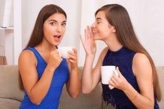 Amis heureux parlant, café potable et thé Photographie stock