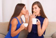 Amis heureux parlant, café potable et thé Photographie stock libre de droits