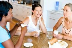 Amis heureux parlant et buvant du café et du thé Image libre de droits
