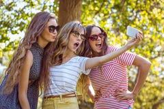 Amis heureux prenant un selfie Photos stock