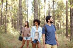 Amis heureux riants dans une forêt Photographie stock libre de droits