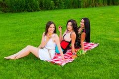 Amis heureux sur le pique-nique en parc Photographie stock libre de droits