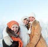 Amis heureux sur un fond de l'hiver Photos stock