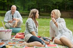 Amis heureux sur un pique-nique extérieur Photo stock