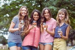 Amis heureux toasing en parc Photos libres de droits