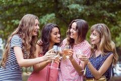 Amis heureux toasing en parc Photos stock