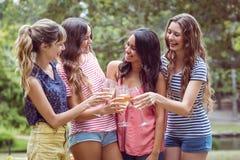 Amis heureux toasing en parc Image libre de droits