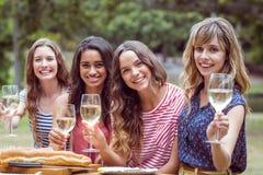 Amis heureux toasing en parc Images libres de droits