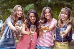 Amis heureux toasing en parc Photographie stock libre de droits