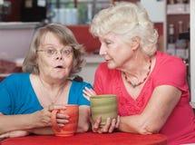 Amis intéressés parlant en café Image libre de droits