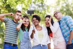 Amis internationaux prenant le selfie en parc Image stock