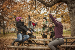 Amis jetant des feuilles d'automne en parc Images stock